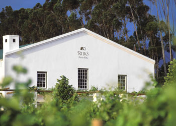 Digraeme02974 Winelands: Exterior of wine cellar with name and emblem of wine cellar displayed above entrance. Vine leaves in foreground. Tall trees in background. Rijks Private Cellar, Tulbagh region, Western Cape, South Africa. ©Graeme Robinson/iAfrika Photos